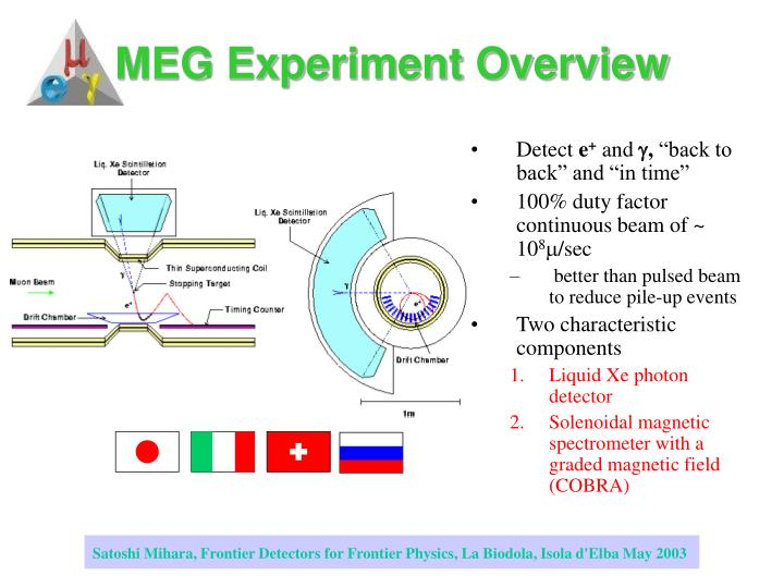 Meg experiment overview
