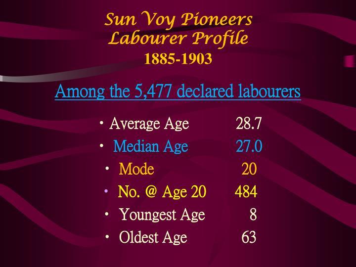 Sun Voy Pioneers