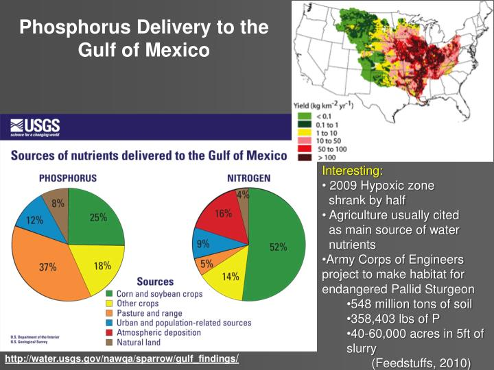 Phosphorus Delivery to the Gulf of Mexico