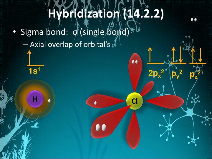 Hybridization (14.2.2)
