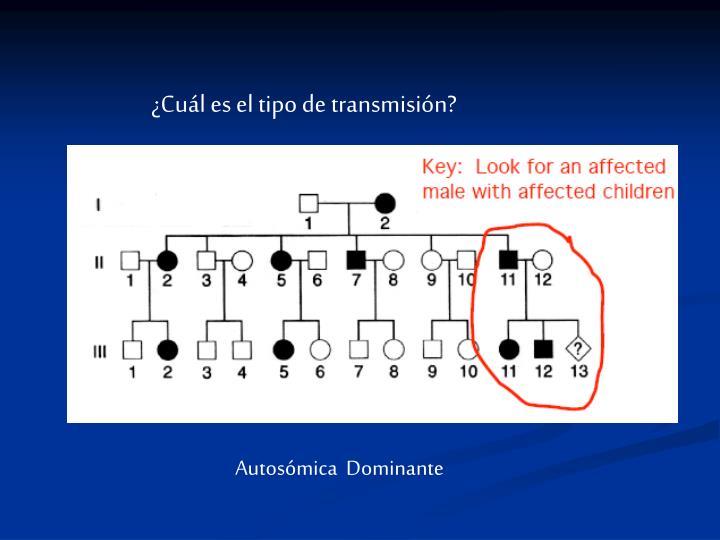 ¿Cuál es el tipo de transmisión?