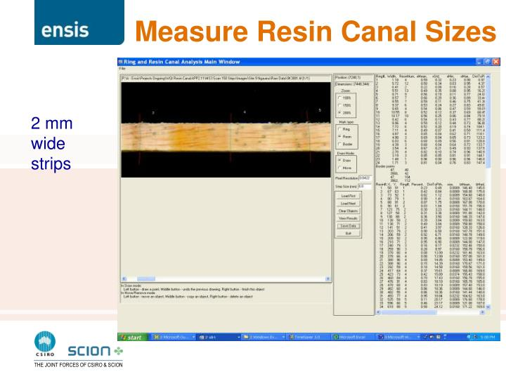 Measure Resin Canal Sizes