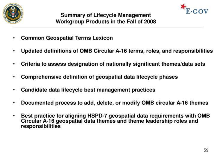 Summary of Lifecycle Management