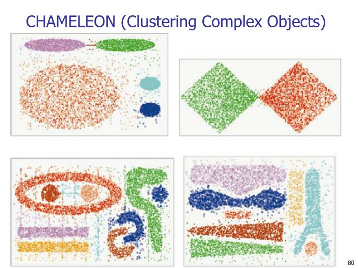 CHAMELEON (Clustering Complex Objects)