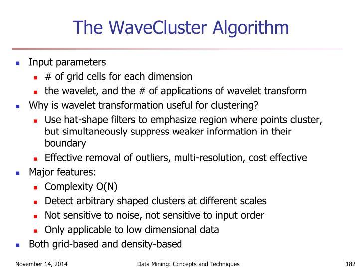 The WaveCluster Algorithm