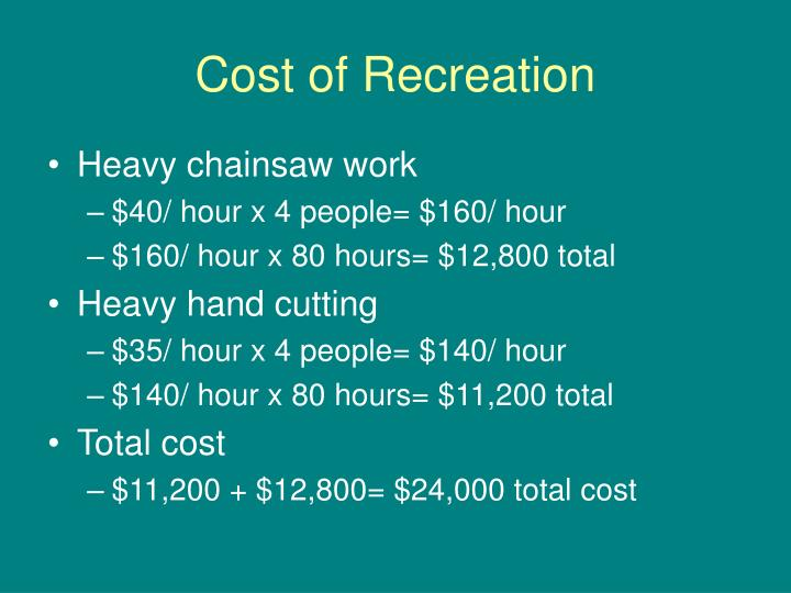 Cost of Recreation