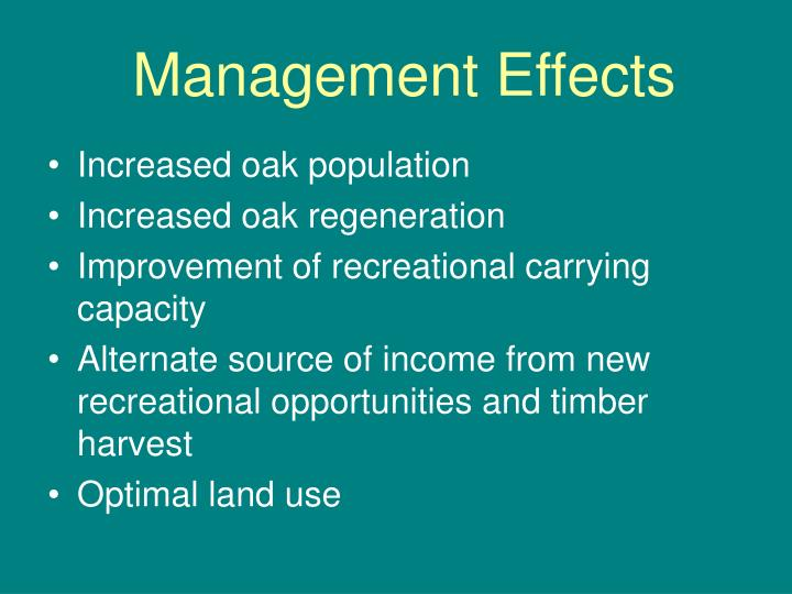 Management Effects