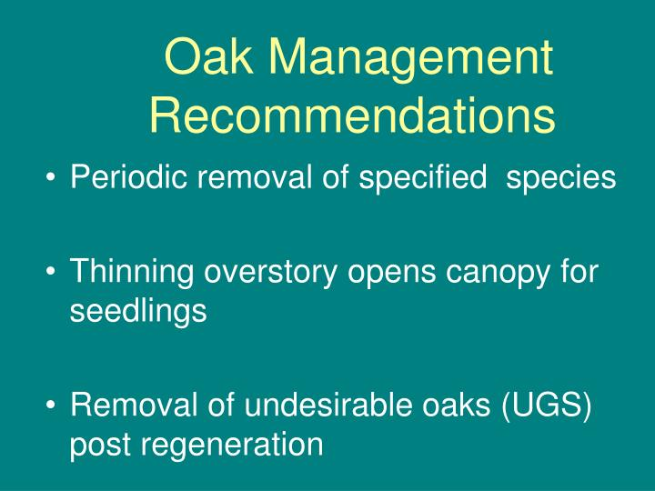 Oak Management Recommendations