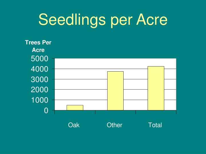 Seedlings per Acre
