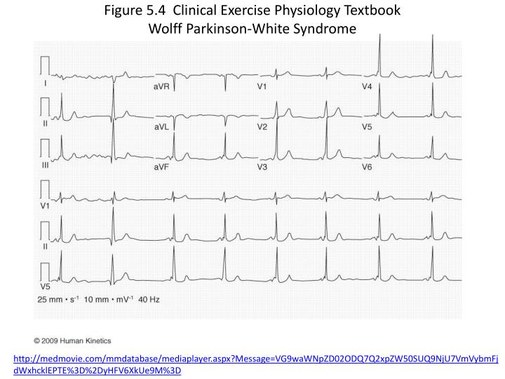 Figure 5.4  Clinical Exercise Physiology Textbook