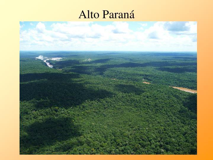 Alto Paraná