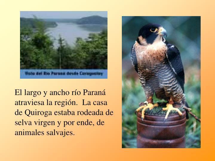 El largo y ancho río Paraná atraviesa la región.  La casa de Quiroga estaba rodeada de selva virgen y por ende, de animales salvajes.