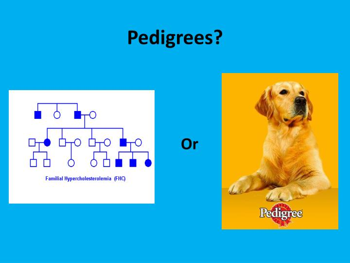 Pedigrees?