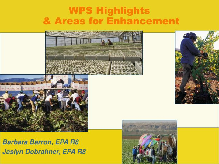 Wps highlights areas for enhancement