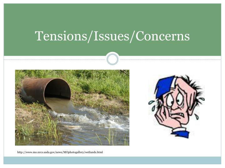 Tensions/Issues/Concerns