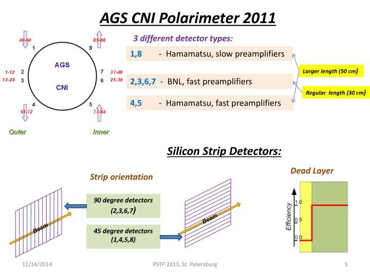 AGS CNI Polarimeter 2011