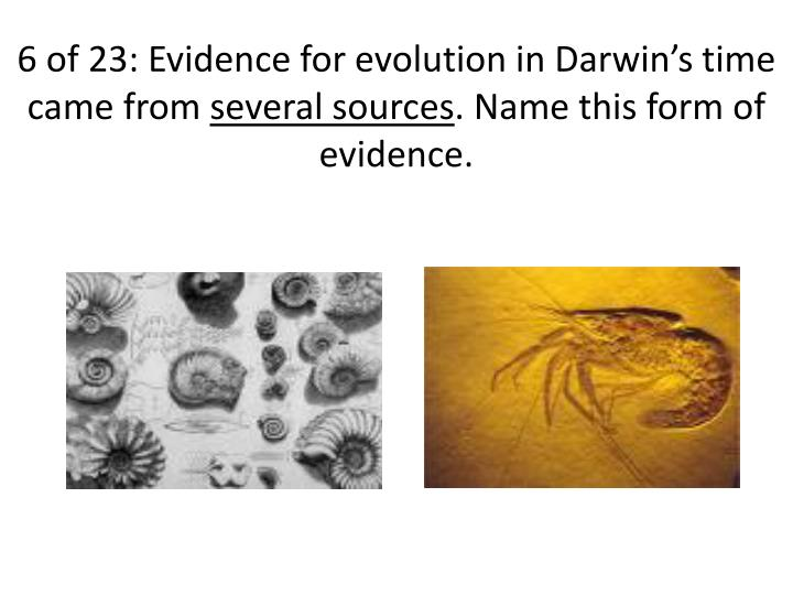 6 of 23: Evidence for evolution in Darwin's time came from