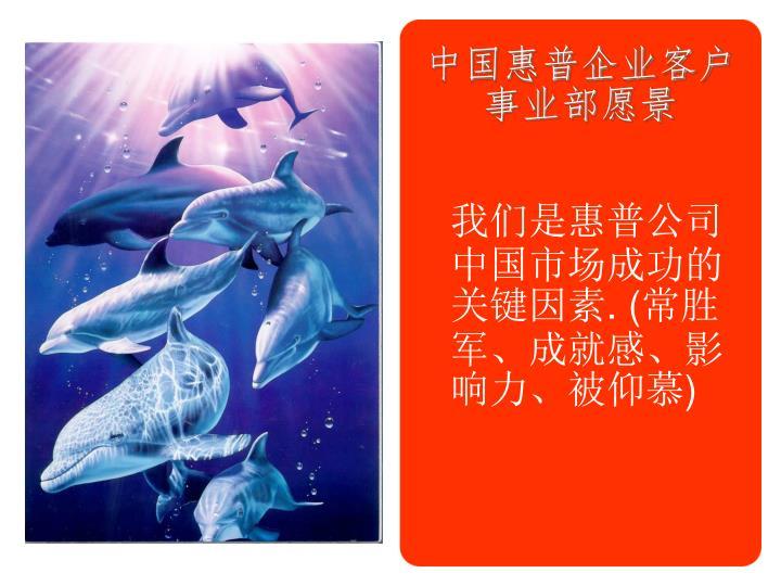 中国惠普企业客户事业部愿景