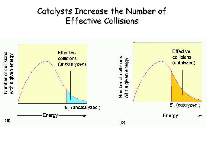 Catalysts Increase the Number of