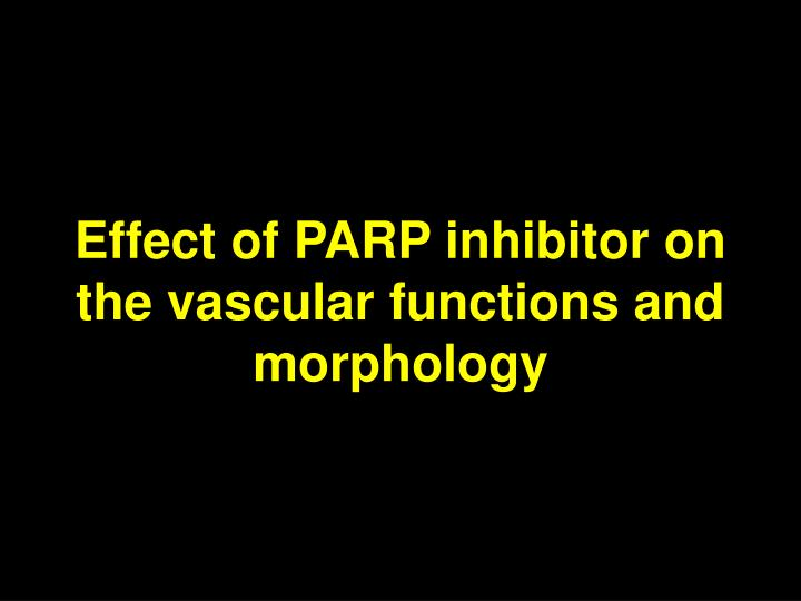 Effect of PARP inhibitor on the vascular functions and