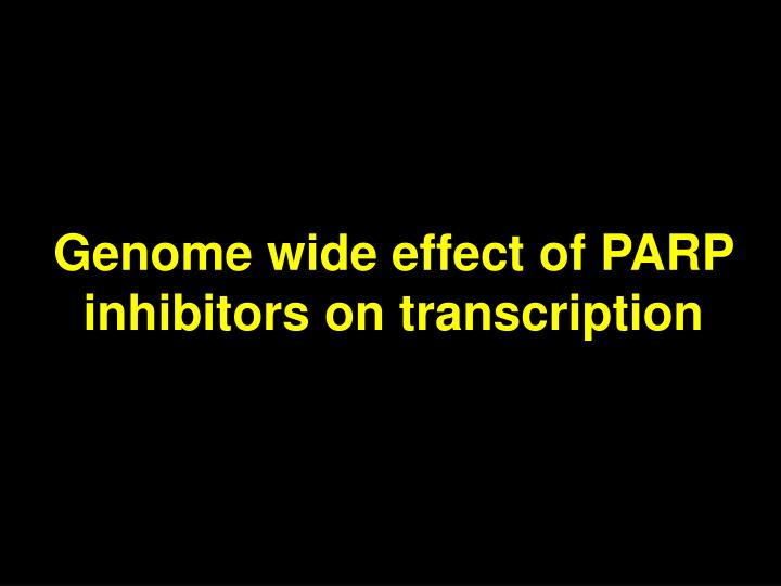 Genome wide effect of PARP inhibitors on transcription