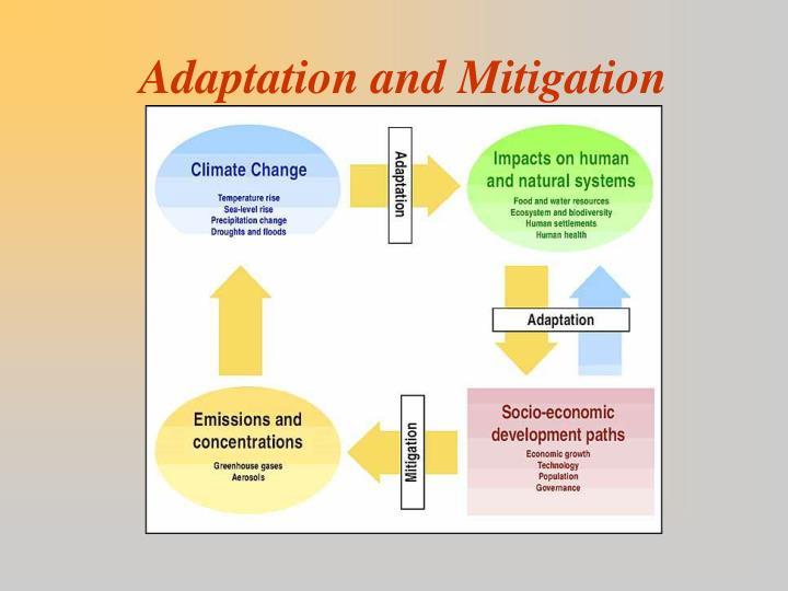 Adaptation and Mitigation