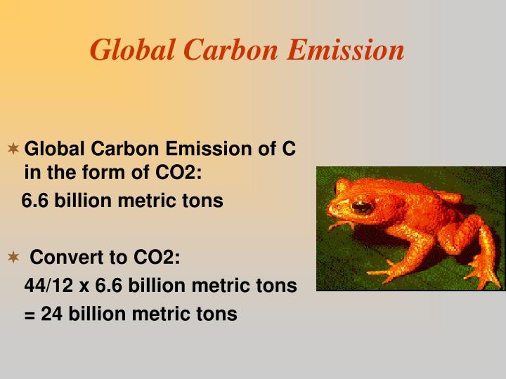 Global Carbon Emission