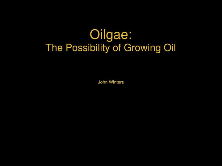 Oilgae the possibility of growing oil