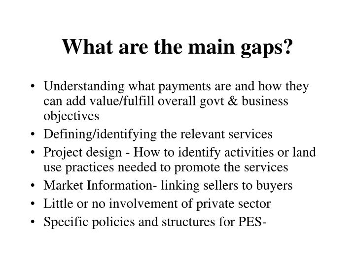 What are the main gaps?