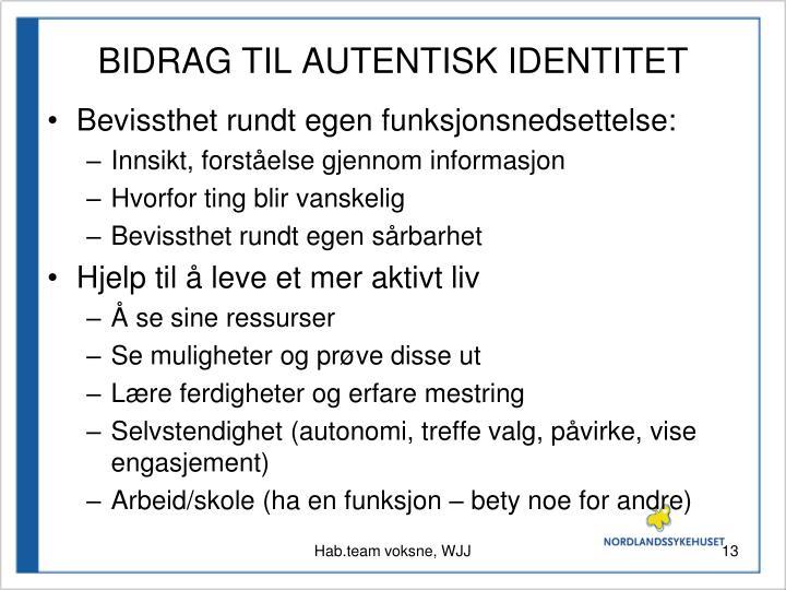 BIDRAG TIL AUTENTISK IDENTITET