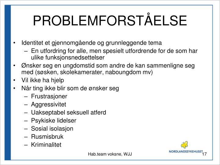 PROBLEMFORSTÅELSE