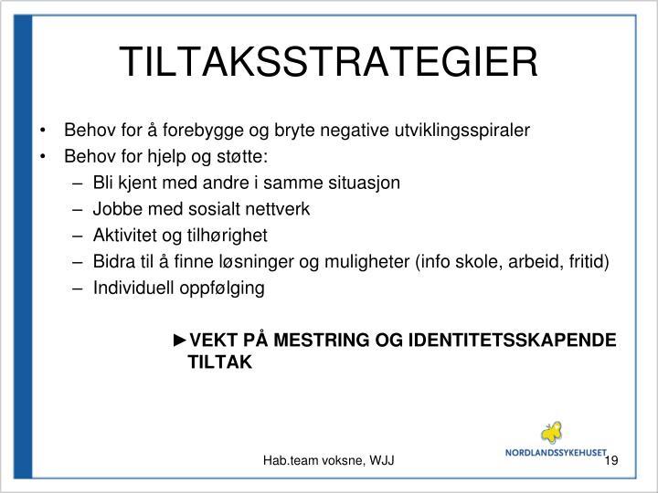 TILTAKSSTRATEGIER