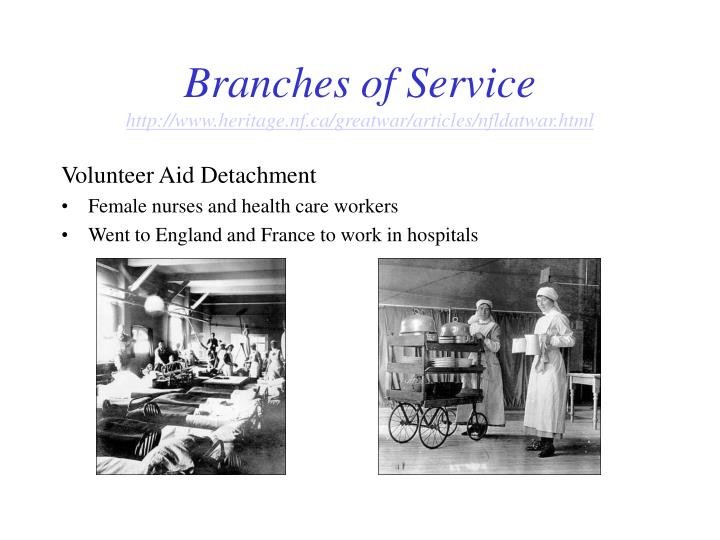 Branches of Service