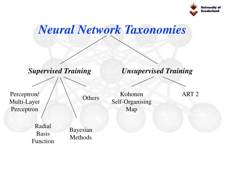 Neural Network Taxonomies