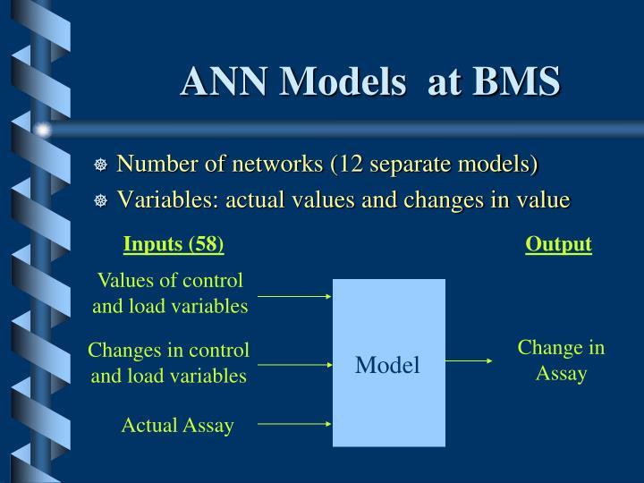 ANN Models  at BMS