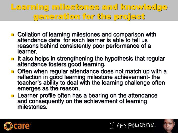 Learning milestones and knowledge generation for the project