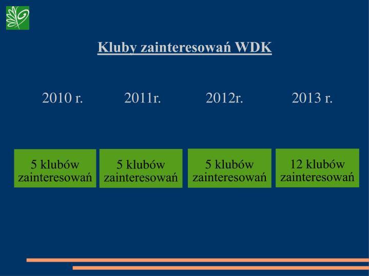 Kluby zainteresowań WDK