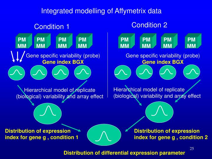 Integrated modelling of Affymetrix data