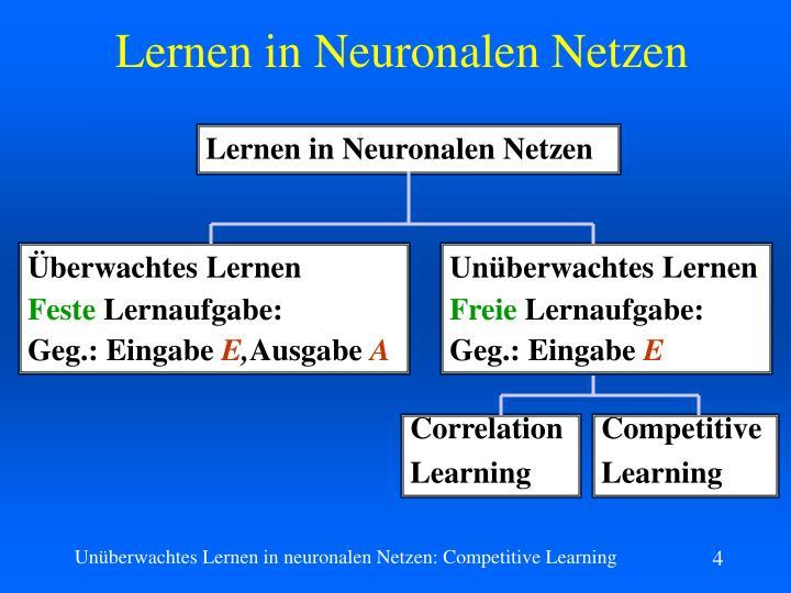 Lernen in Neuronalen Netzen