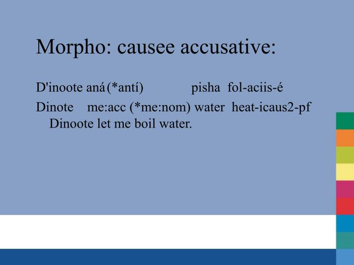 Morpho: causee accusative: