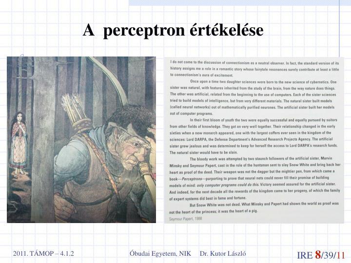 A  perceptron értékelése