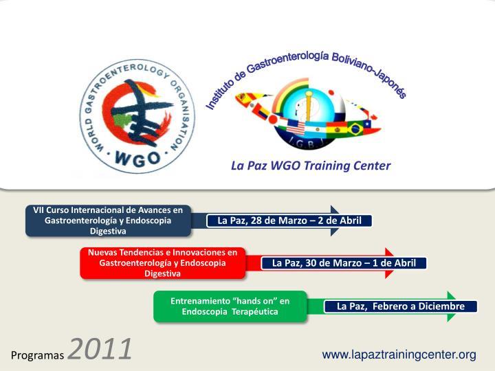 Instituto de Gastroenterología Boliviano-Japonés