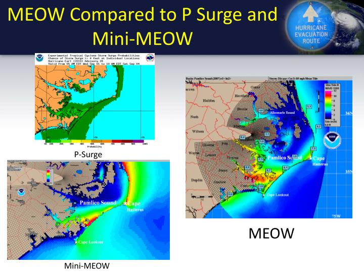 MEOW Compared to P Surge and Mini-MEOW