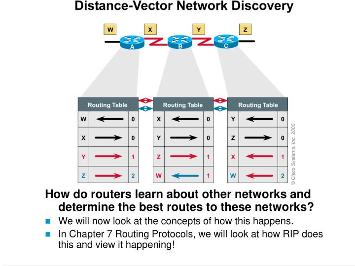 How do routers learn about other networks and determine the best routes to these networks?