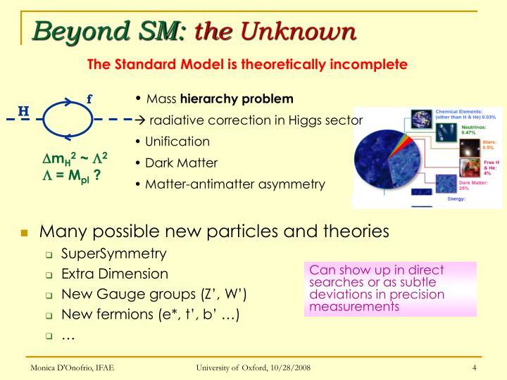 Beyond SM: