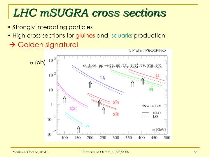 LHC mSUGRA cross sections