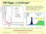 sm higgs a challenge