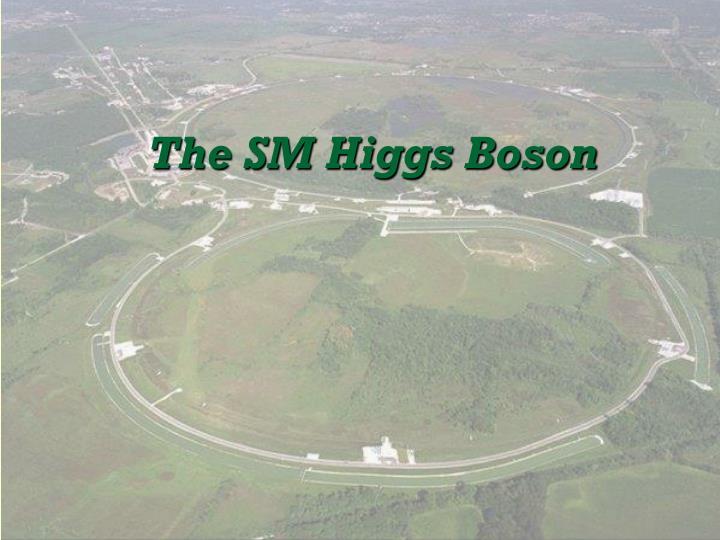 The SM Higgs Boson