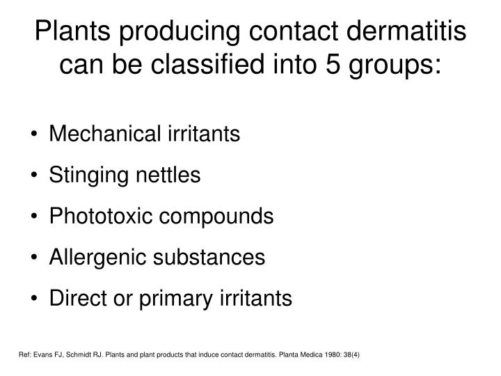 Plants producing contact dermatitis can be classified into 5 groups: