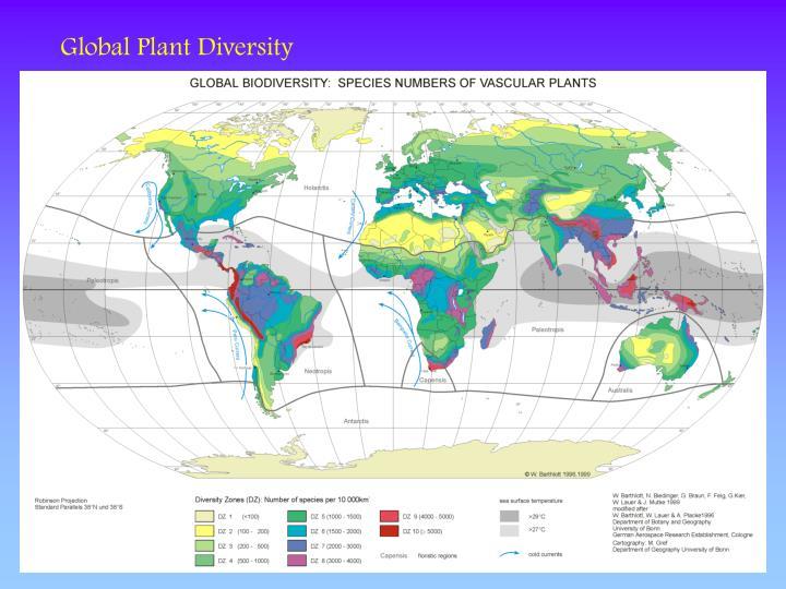 Global Plant Diversity